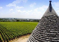 Ten Girolamo vineyard with Trullo roof. Image provided by Grape Occasions http://www.grapeoccasions.com/