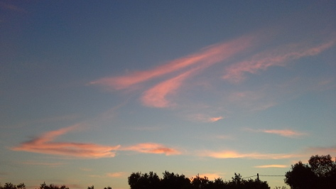 Rosè Sky