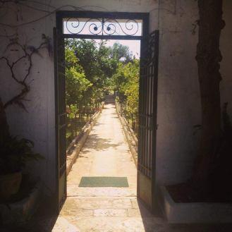 citrus garden il Frantoio